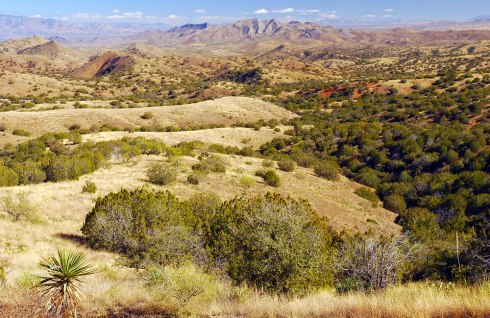 Site of Rosemont copper mine (Photo credit: Arizona Mining Reform Coalition)