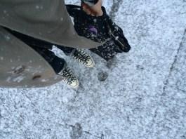 Through fleeting snowfall...