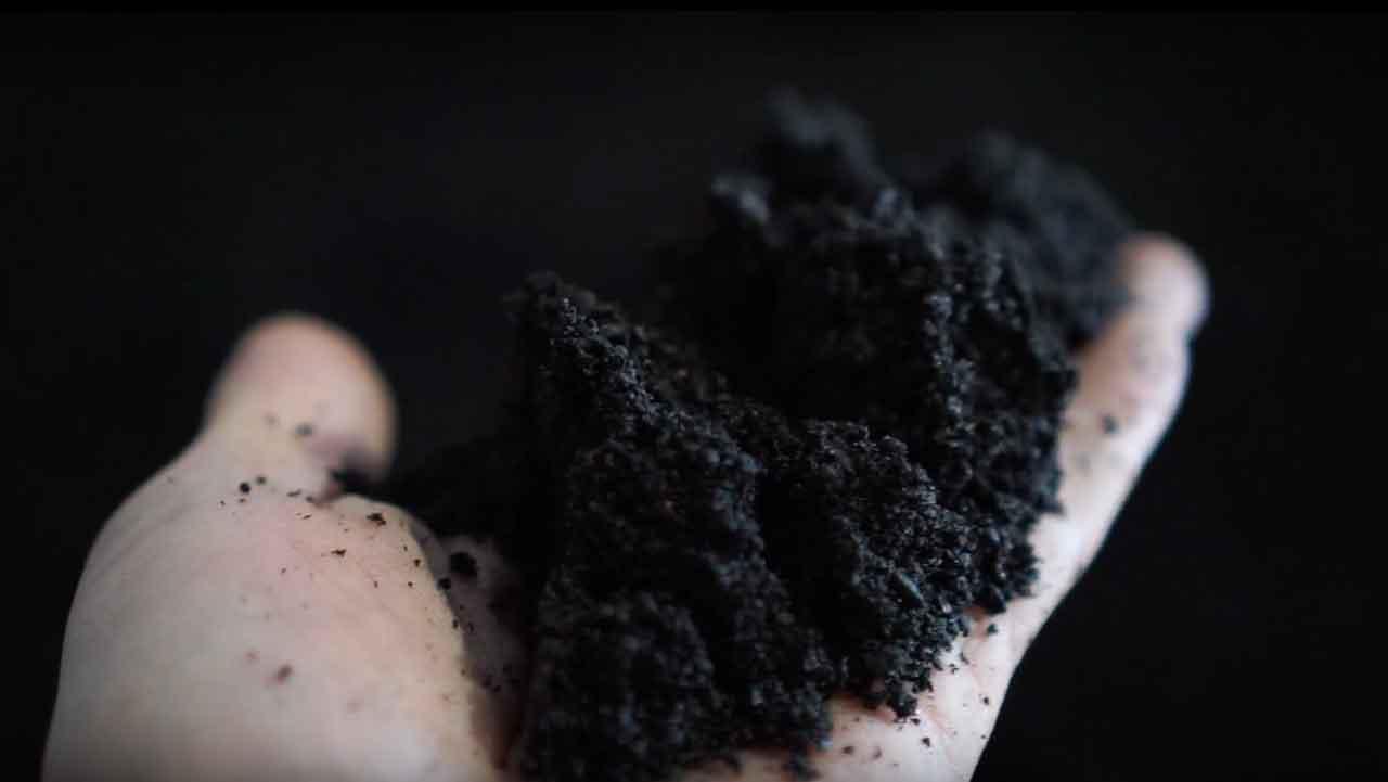 biochar source loose in hand