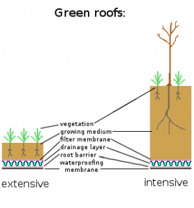 green roofs types Intensive extensive