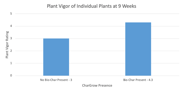 bar chart of plant vigor measurement in hemp trial with biochar and microbes