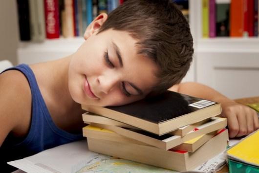 a lazy boy sleeping on the books