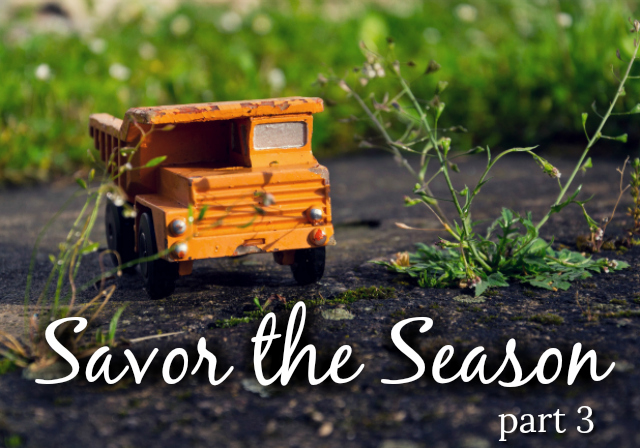 Savor the Season - Part 3