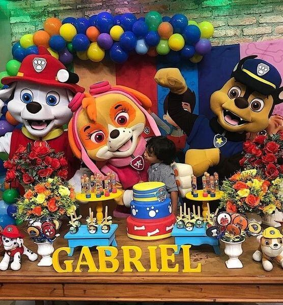 Paw Patrol Sky Birthday Party Characters For Kids Call 855 705 2799