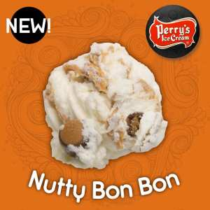 Nutty Bon Bon - Perry's Ice Cream