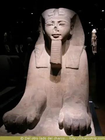 Esfinge del museo egipcio
