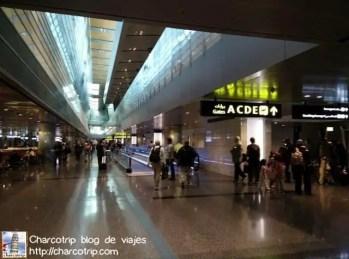 QatarAirwaysDoha