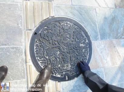 Entre otras cosas veras las bellas tapas de alcantarilla de Nara
