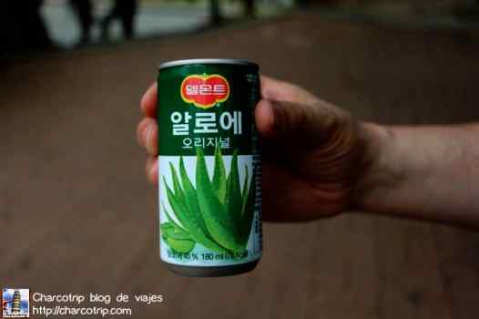 aloe-vera-suwon