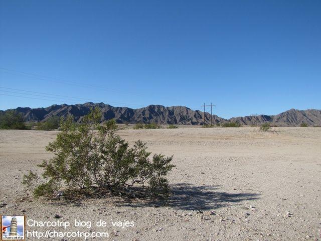 Despues de un rato de manejar, paramos para admirar el paisaje... desertico