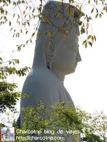 Buda de perfil