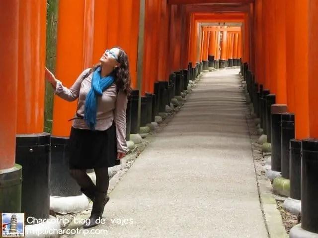 Pero aunque no parezca si se puede ver a través de los torii