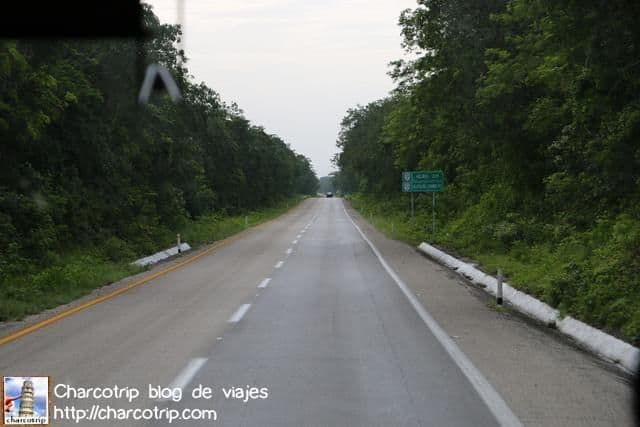carretera-verde-yucatan