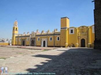 Convento amarillo pollito