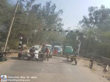 cruce-tren-india