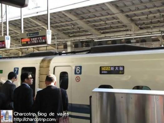 Gente ordenadamente esperando el tren