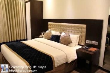 hotel-grand-godwin-delhi4