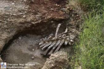 huesos-safari-shaba-kenia