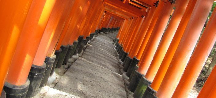 Un camino de torii
