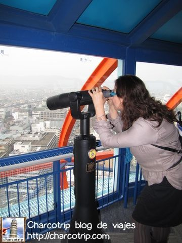 Y en varias partes del mirador hay binoculares y son gratis :D (bueno mas bien incluidos en el precio)