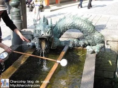 Con forma de dragon