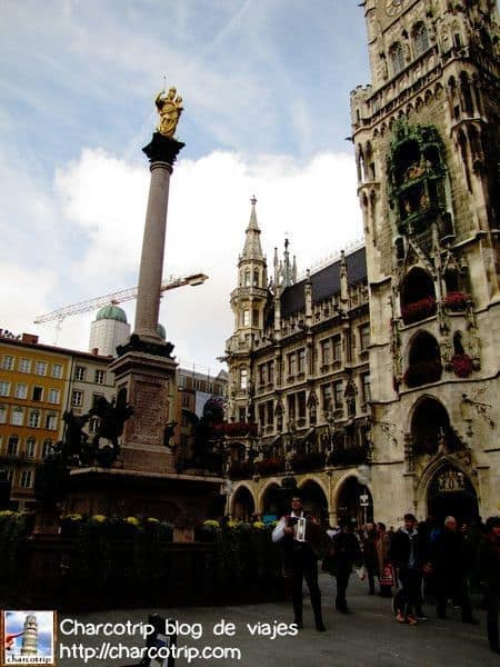 El centro de la plaza