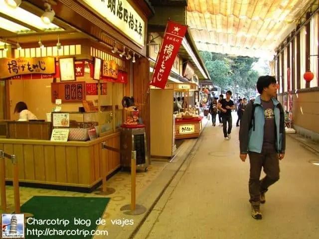 mijayima-mercado
