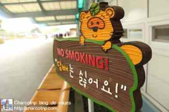 no-smoking-dmz