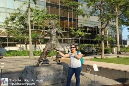 Pose Bruce Lee