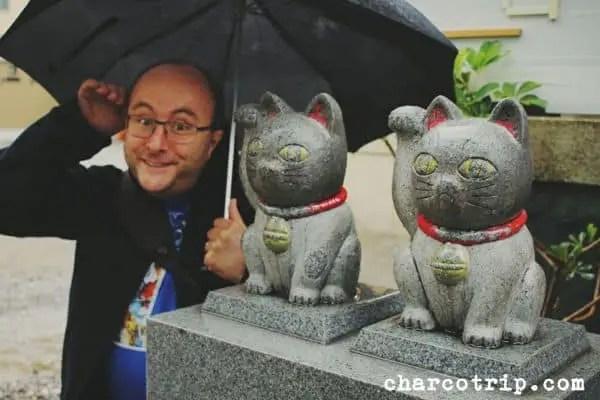 Vicente saludando a los gatos