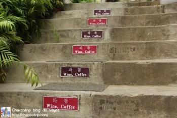 Vino o Café, difícil elección