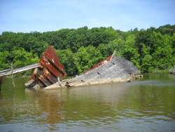 Shipwrecks In Mallows Bay Photo Gallery