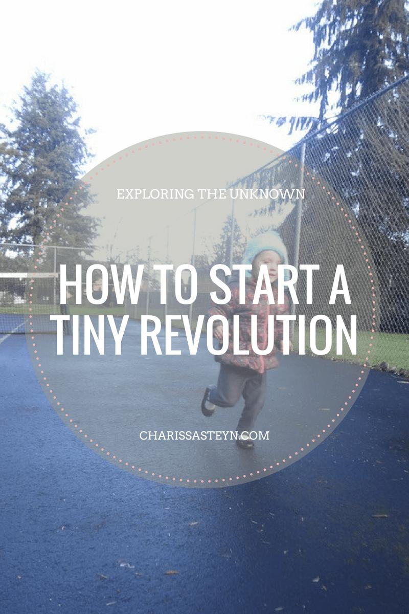 start-a-tiny-revolution