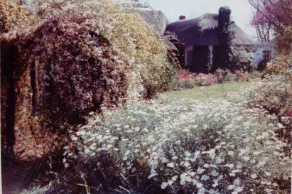 Vanessa Hogge's Grandmother's garden, South Africa