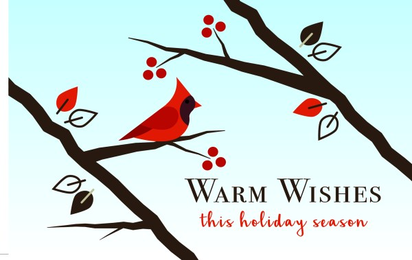 christmas-greeting-card-cardinal-2-by-chelsea-mcfadden.jpg