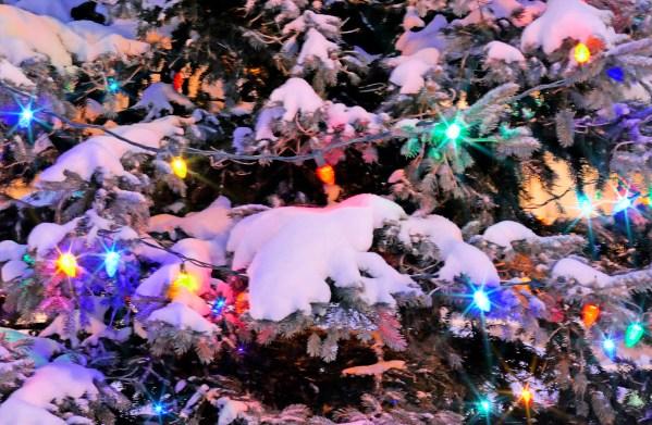 christmas-greeting-card-christmas-starry-night-by-alexander-khomoutov.jpg