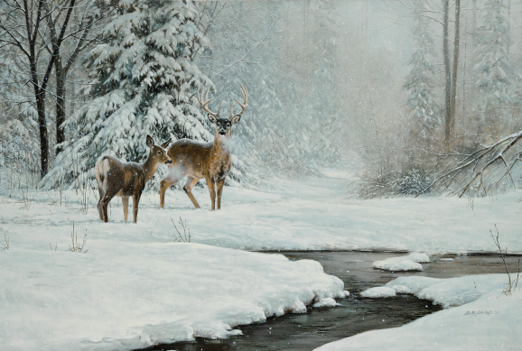 christmas-greeting-card-deer-by-d.r.-laird.jpg