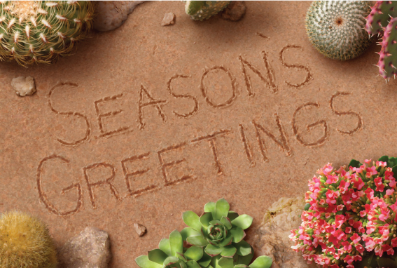 christmas-greeting-card-desert-seasons-greetings-by-alan-giana.jpg