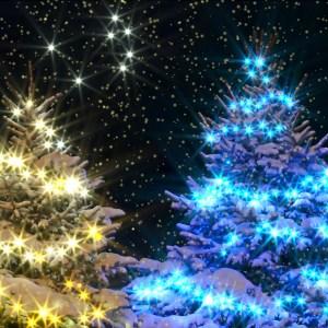 christmas-greeting-card-holiday-magic-night-by-alexander-khomoutov.jpg