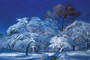 christmas-greeting-card-snow-fairy-by-shinya-kumazawa.jpg