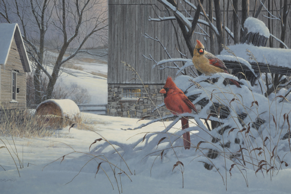 christmas-greeting-card-the-cardinals-by-dr-laird.jpg