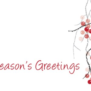 christmas-greeting-card-winter-berries-by-inspired-thinking.jpg