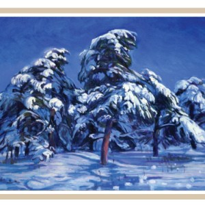 christmas-greeting-card-winter-secrets-by-shinya-kumazawa.jpg