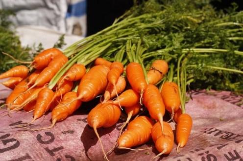 vegetable-1553195_640