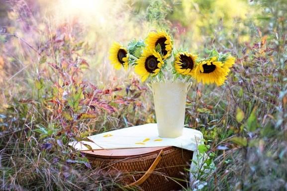 sunflowers-1719119_640
