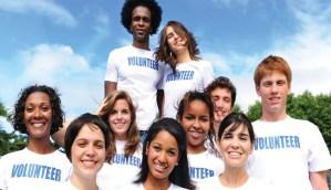 wordpress nonprofit theme
