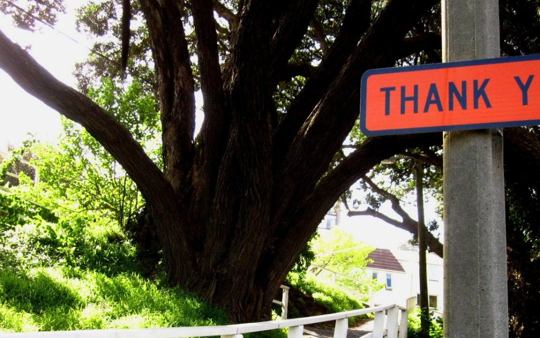 5 Ways to Say Thank You to the People Who Encouraged Us