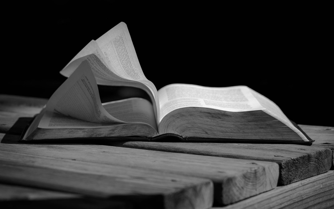 Read and Respond: Writing Comes from Reading