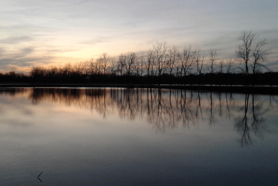 Frankfort Lagoons Did You Know