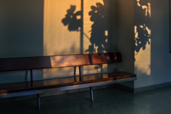 bench shadows my word of the week shadow